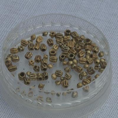 В Казахстане археологи нашли мумию в золотых сапогах