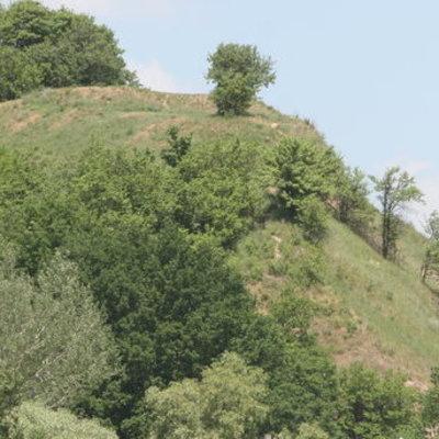 На Лысой горе в Киеве обнаружены боеприпасы Второй мировой войны