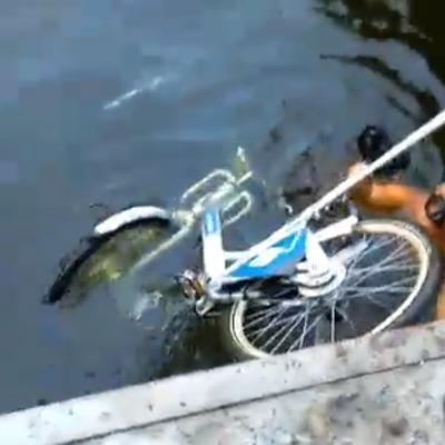 На Речном вокзале выловили утопленный вандалами велосипед (видео)