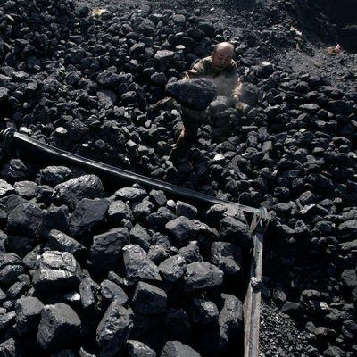 На Донбассе изъяли незаконно добытый уголь стоимостью более 5 миллионов гривень
