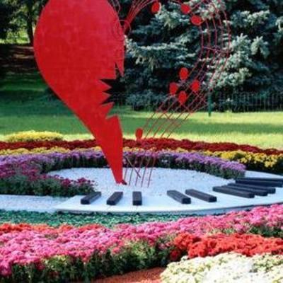 В Киеве открылся Фестиваль хризантем (фото)