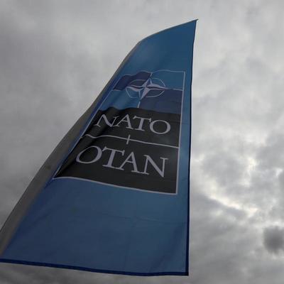 Украина присоединится к одним из крупнейших военных учений НАТО