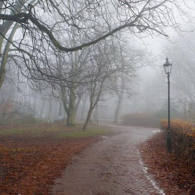 В Украине ожидается похолодание и туманы - прогноз синоптиков