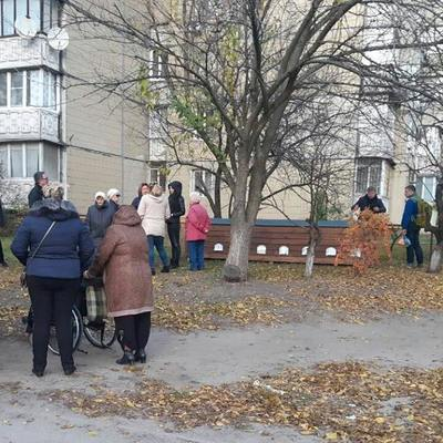 В Киеве создали ночлежку для бездомных котов