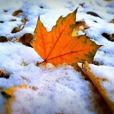 Завтра в Киеве - до 6 сантиметров снега