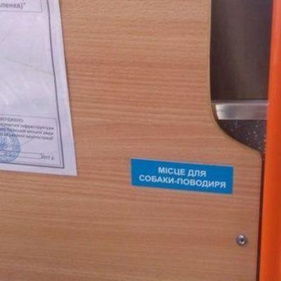 В киевских маршрутках появились места для собак-поводырей