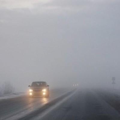 Водителей предупредили о тумане: видимость 200-500 метров