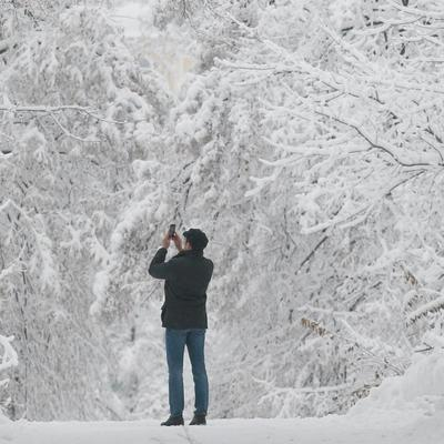 Сегодня в Киеве небольшой снег, на дорогах местами гололедица