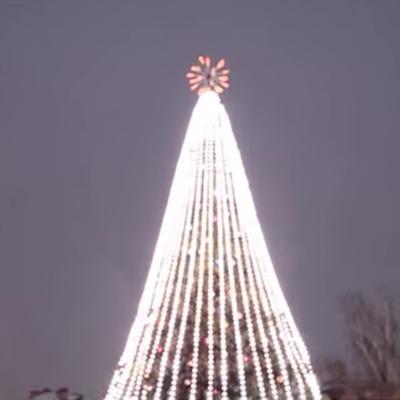 В Борисполе пьяный мужчина залез на главную елку города (видео)