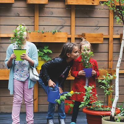В детсадах и школах Киева создадут 20 городских ферм