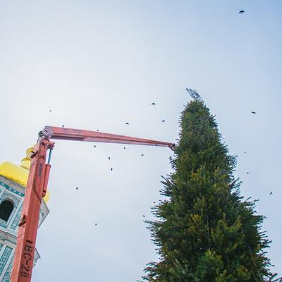 В Киеве на Софийской площади разбирают елку и рождественский городок