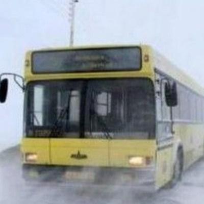 В Киеве пассажиры толкали троллейбус (видео)