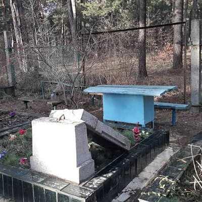 Вандалы разгромили Лесное кладбище (видео)