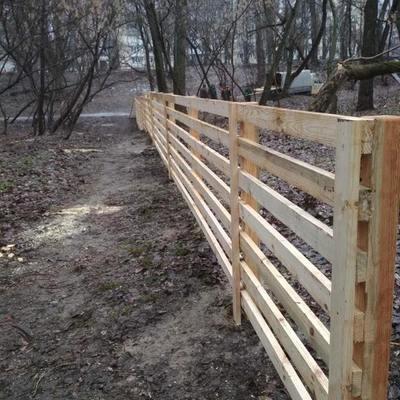 На Русановке появится площадка для выгула собак