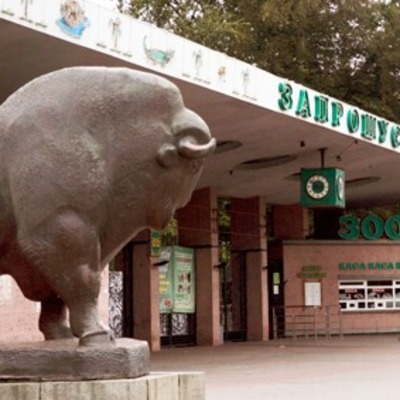 В киевском зоопарке появится второй вход и трехэтажный паркинг
