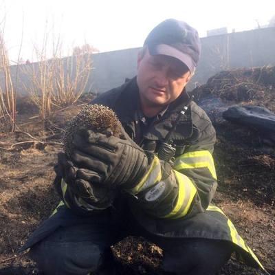 На Киевщине во время пожара спасли ежика