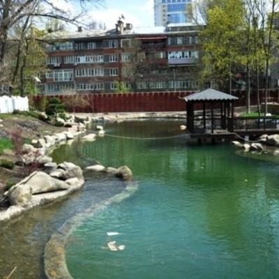 Как выглядят новые озера Киевского зоопарка (фото)