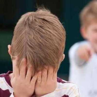 В столичной школе родителей двух учеников оштрафовали за буллинг