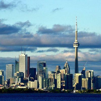 МАУ увеличит частоту рейсов Киев-Торонто