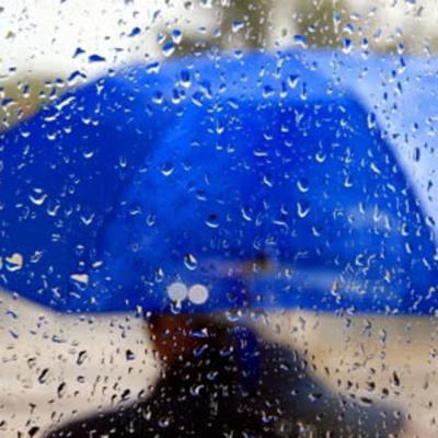 В Киевской области завтра будет дождь