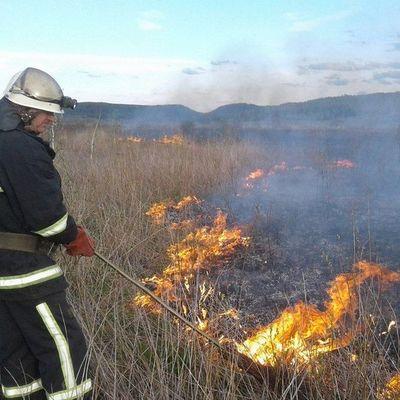 На Житомирщине из-за жары горят торфяники