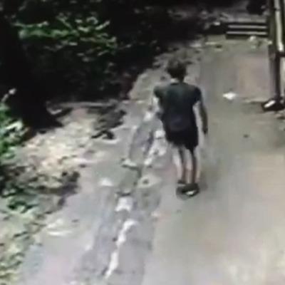 В Киеве мужчина затолкал девушку в ее квартиру и изнасиловал (видео)