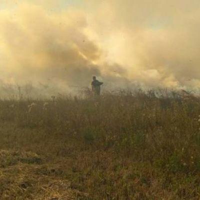 Синоптики предупредили о высокой пожарной опасности на выходных