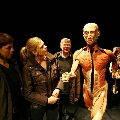 В столице впервые покажут выставку человеческих тел после смерти