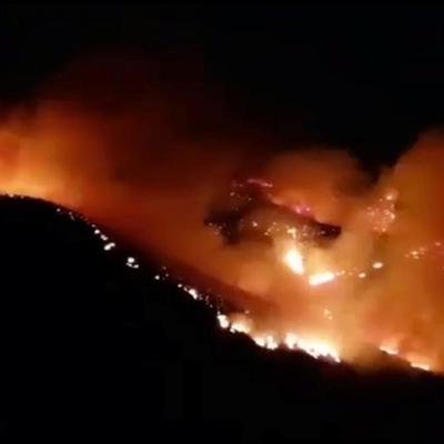 На Канарских островах горит свыше 900 га леса (фото)