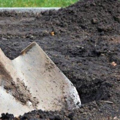 В Таджикистане влюбленного парня пытались закопать живьем