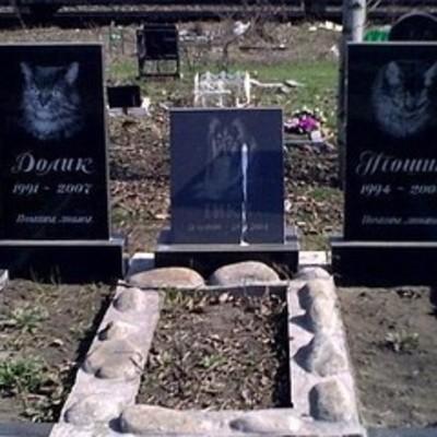 Киевлян просят перезахоронить своих домашних питомцев с кладбища на Русановке
