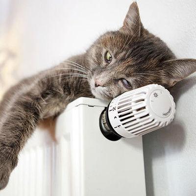 Ожидать ли повышения тарифов на тепло: ответ КГГА