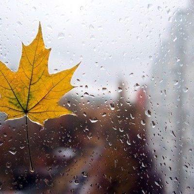 В Украине ожидается существенное понижение температуры