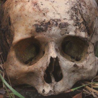 Тела умерших людей и животных способны перемещаться