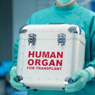Члены ОПГ заработали 10 млн долларов, занимаясь незаконной пересадкой органов