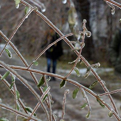 ГСЧС предупреждает о сильных заморозках и грозах