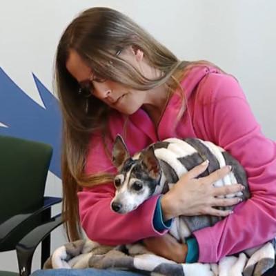 Потерявшийся пес нашелся через 12 лет