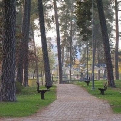 В Дарницком районе создадут Аллею памяти воинов АТО