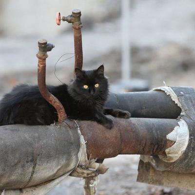 Тарифы на отопление и горячую воду в Киеве не изменятся до конца сезона – КГГА