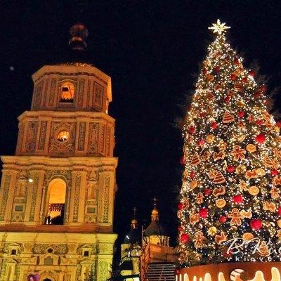 Устанавливать елку на Софийской площади начнут 10 декабря