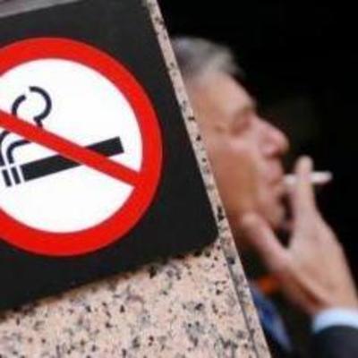 Стало известно, в каких местах штрафуют за курение чаще всего