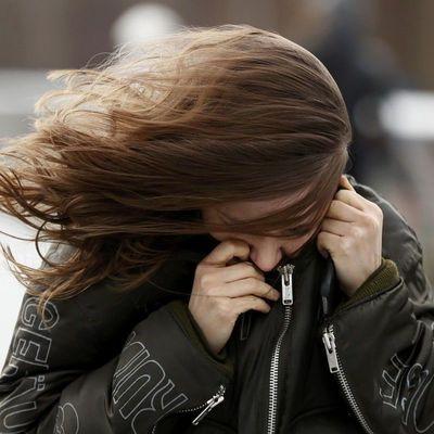 Завтра в Киеве ожидается шквальный ветер 15-20 м/с