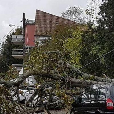 Во Франции 140 тыс. домов остались без света из-за шторма