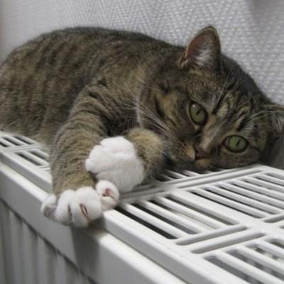 Около 40 многоэтажек Киева могут остаться без тепла: известна причина