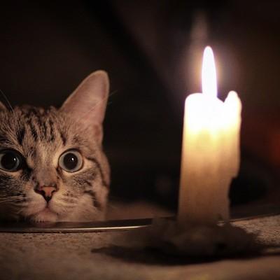 Где в Киеве отключат электричество в четверг, 14 ноября