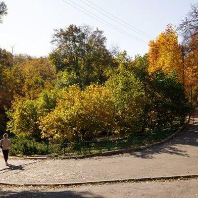 Сегодня в Украине будет солнечно