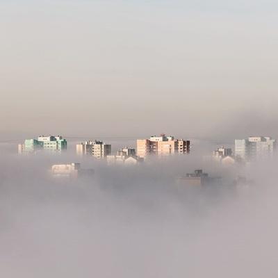 В столице ночью и утром ожидается туман: киевлян предупреждают о желтом уровне опасности