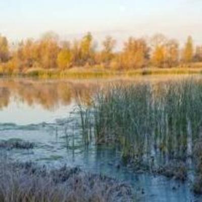 Синоптик рассказал, в каких областях Украины похолодает