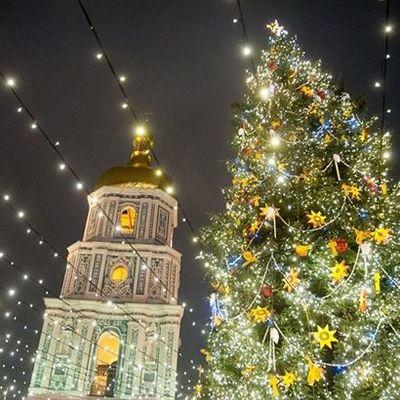 В Киеве начали устанавливать главную елку страны: подробности