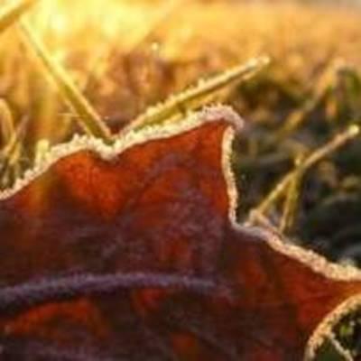 Синоптики рассказали, какие сюрпризы готовит погода украинцам в первый день зимы